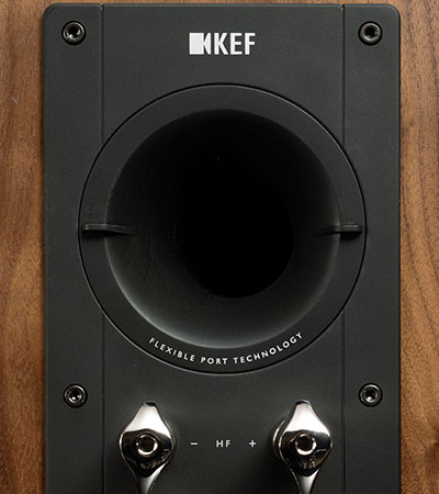 KEF Reference series speakers flexible rear port tubes.